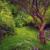 Barbados' Andromeda Gardens. Photo by Andre Donawa Photography