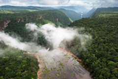 Potaro Gorge, Guyana. Photo by Pete Oxford/Nature Picture Library/Alamy Stock Photo