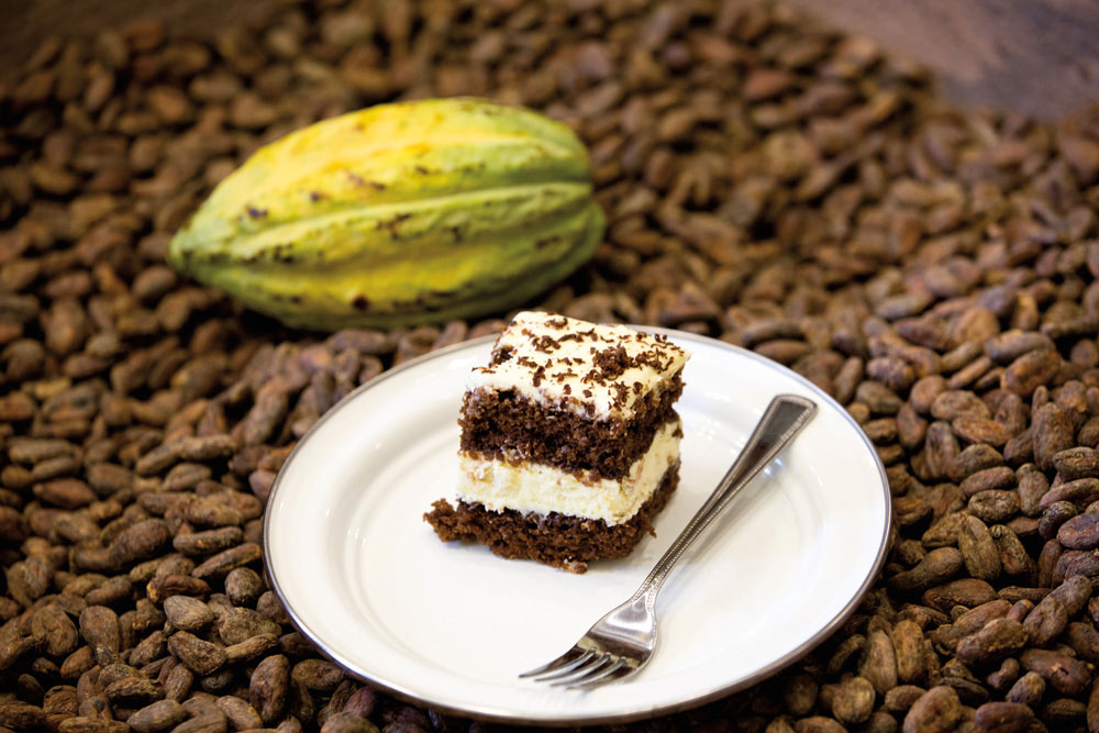 Photo courtesy the Grenada Chocolate Festival
