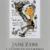Jane Eyre: Caribbean Drawings