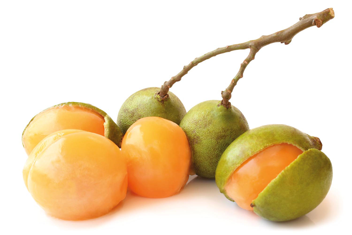 Known as guinep in Jamaica and chenette in Trinidad and Tobago, this popular fruit may offer a remedy for hypertension. Photo by Olga Popova/Shutterstock.com