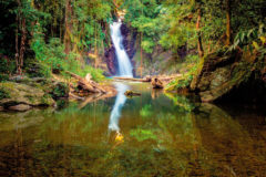Just south of Paria Bay, a short hike into the forest, the river takes a plunge at Paria Falls. Photo by Ziad Joseph