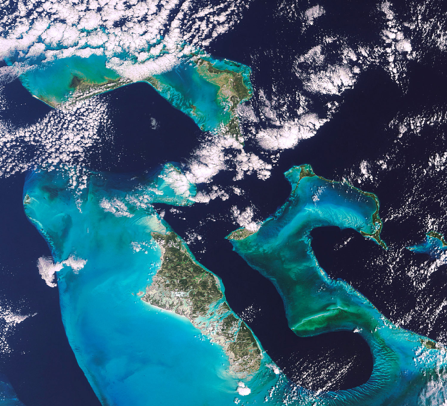 Seen from space, the dramatic deep blue Tongue of the Ocean separates Andros (lower left) from New Providence Island. Photograph by www.chelys.eu