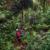 Waitukubuli Trail, Dominica. Photo courtesy Discover Dominica Authority