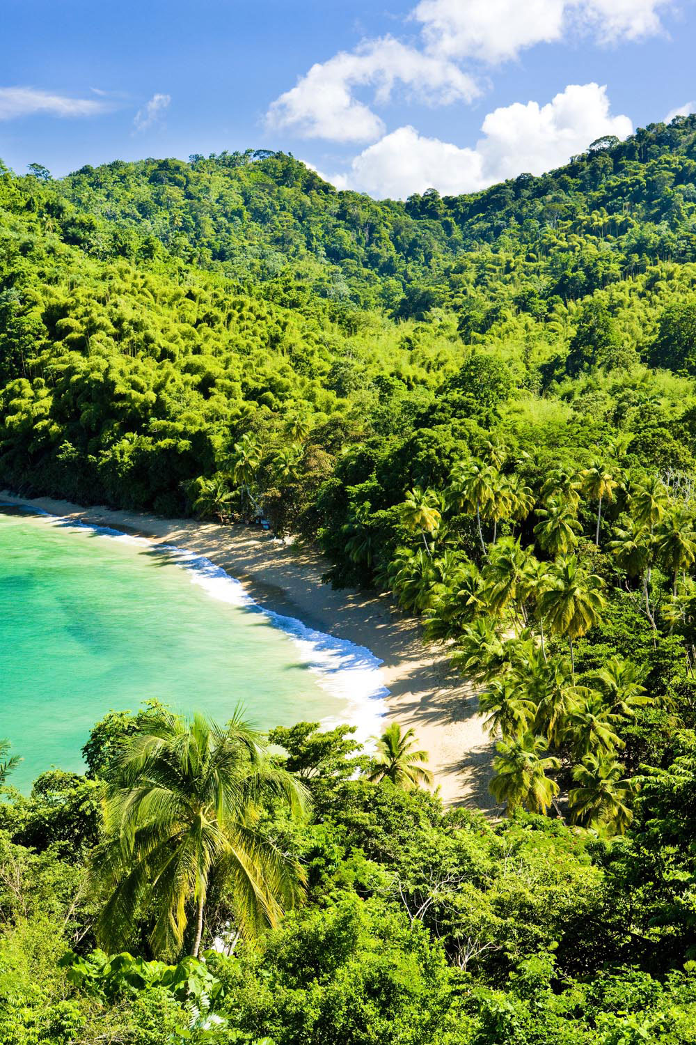 Englishman's Bay on Tobago's sheltered leeward coast. Photograph by Richard Seemik/Shutterstock.com