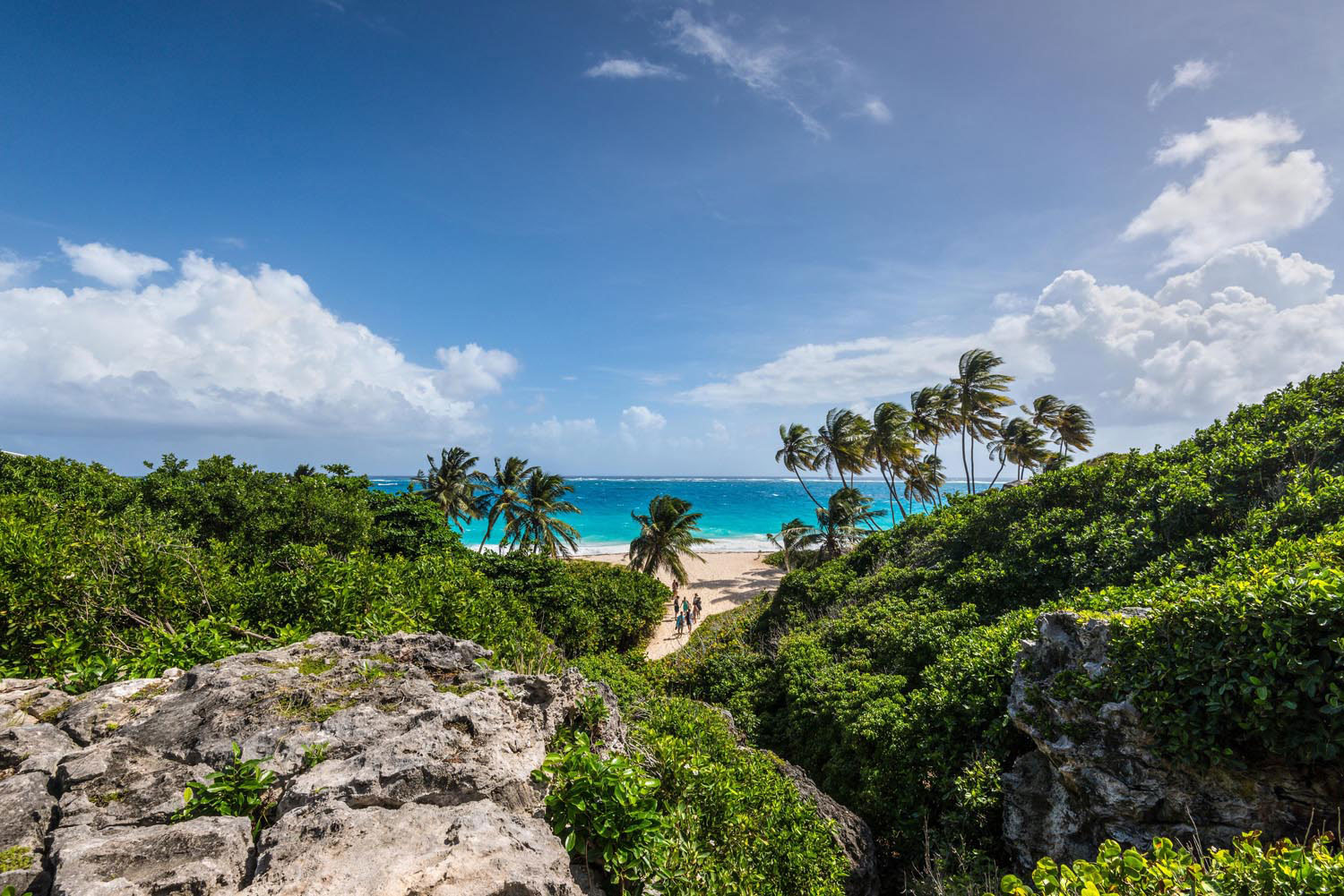 Bottom Bay on the southeast coast of Barbados. Photograph by Byvalet/Alamy Stock Photo