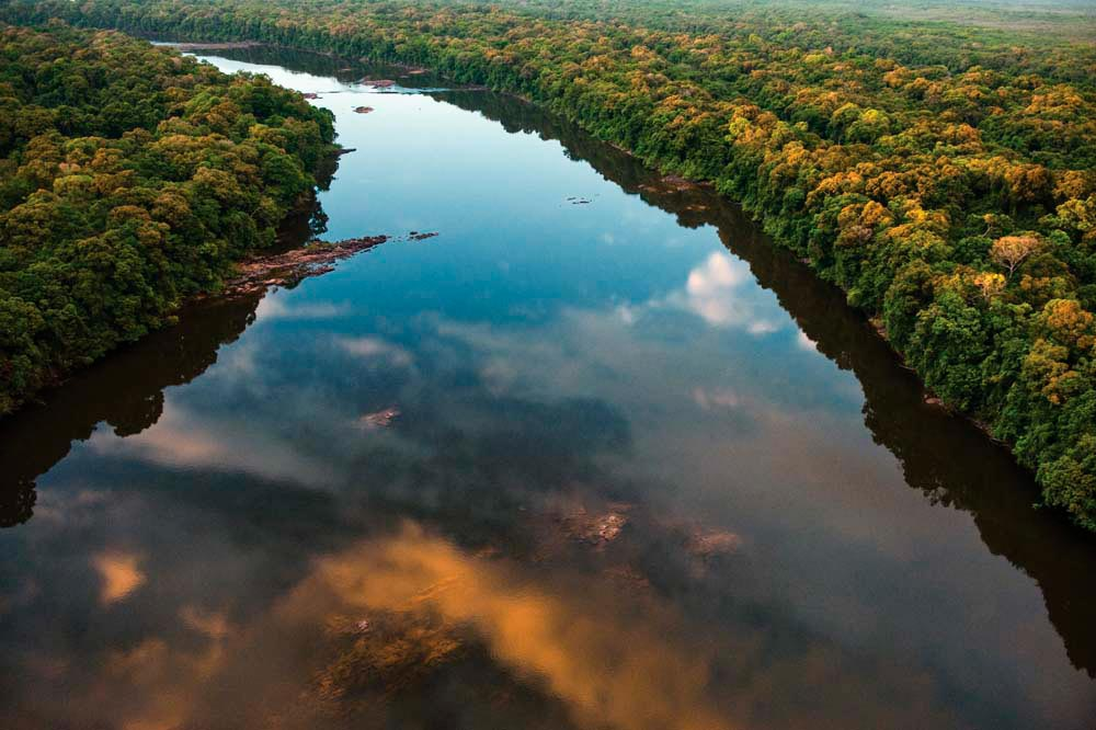 A calm stretch of the upper Essequibo, Guyana's biggest river. Photo by Pete Oxford
