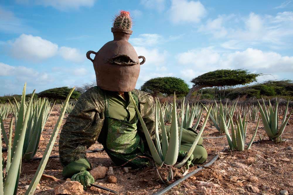 Buchibushi, a performance work by Adam Patterson (2018, Oranjestad, Aruba). Photo by Sharelly Emanuelson, courtesy Adam Patterson