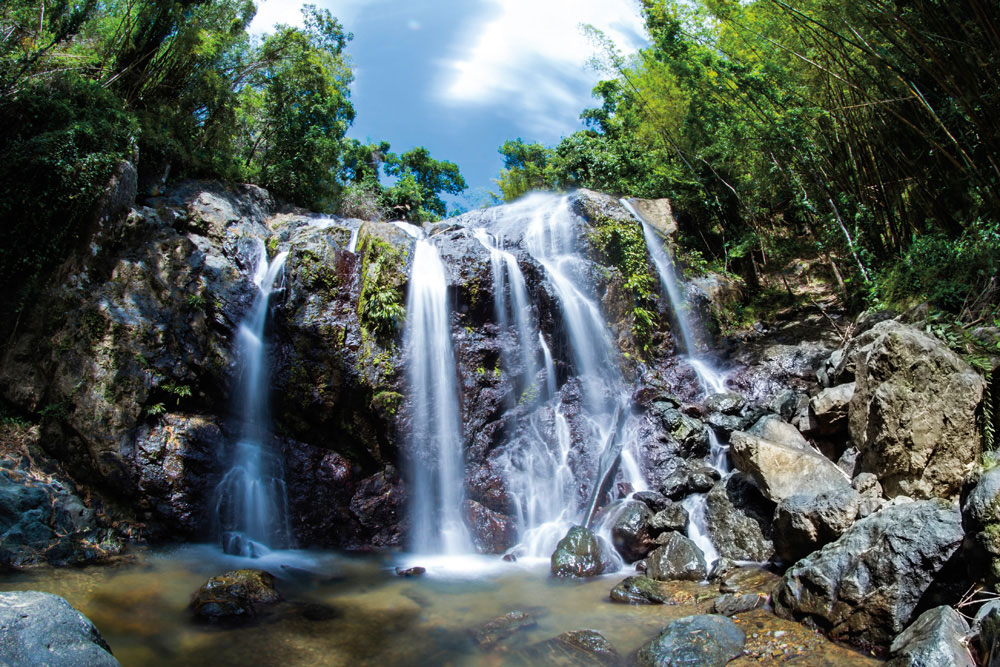 Argyle Falls is the most celebrated of Tobago's waterfalls. Photo by Nicolas Rinaldo/Shutterstock.com