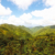 Green hills as far as the eye can see. Photograph by Images Dominica