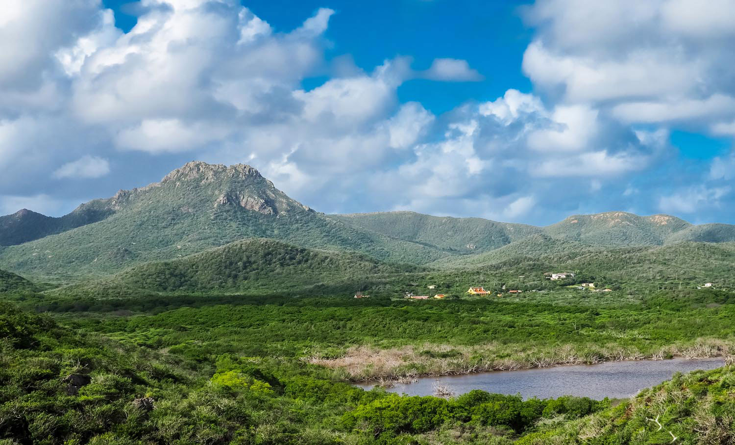 The summit of Christoffelberg looms above Curaçao's largest national park. Gail Johnson/Shutterstock.com