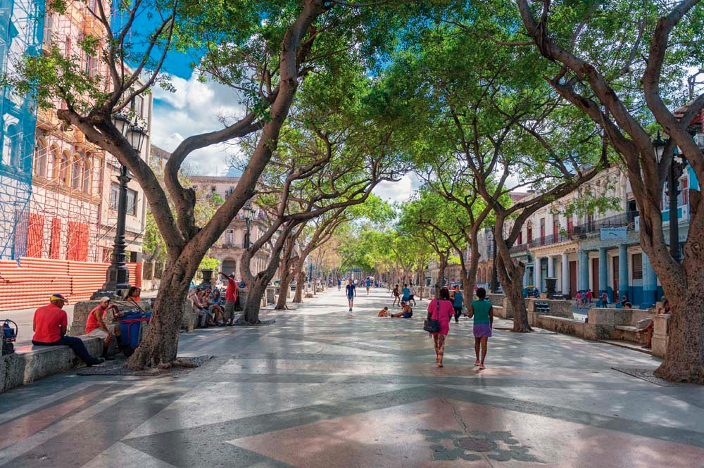 A leafy stretch of the Paseo del Prado. Photo by Photosounds/Shutterstock.com
