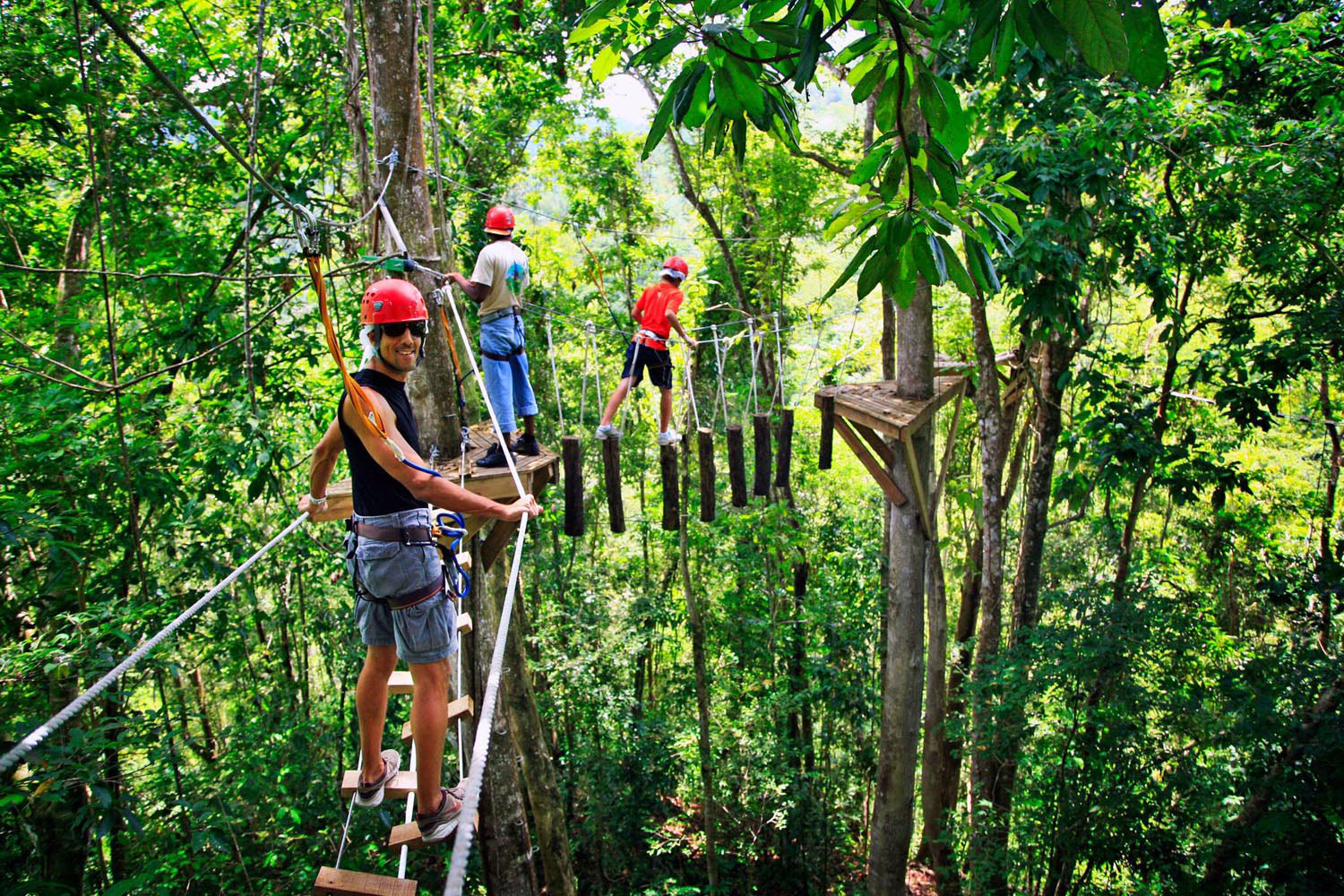 The canopy walkway near Dennery offers a bird's eye view of the forest. Photo courtesy St Lucia Tourism Authority