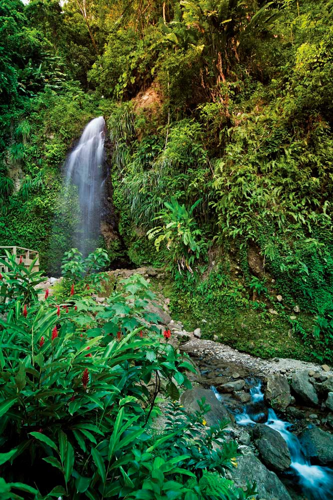On the outskirts of Soufrière, easily accessible by car, Toraille Falls are surrounded by flower-filled botanical gardens, and feature a plunge pool perfect for a refreshing dip (#nature #wild #taketheplunge). Photo by Danielle Devaux