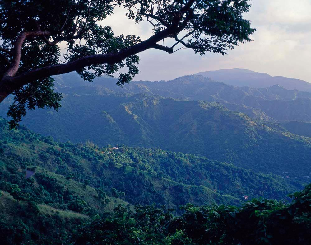 Blue Mountains, Jamaica They are an icon of Jamaica, towering above Kingston, home to rare flora and fauna that thrive in the microclimates of higher elevations, and to the island's best coffee farms. In brilliant sunshine, the lushly forested slopes of the Blue Mountains are obviously green — but as dusk falls, or on rainy day, they fade into the many smudged shades of blue that lend them their name. Photo by Greg Balfour Evans / Alamy Stock Photo