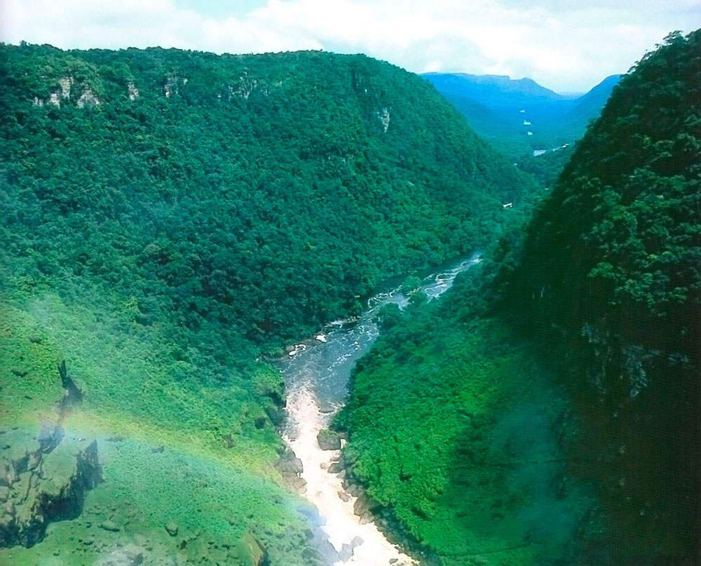 The unbroken forest is nearly the size of Great Britain... Photograph courtesy The Tourism and Hotel Association of Guyana