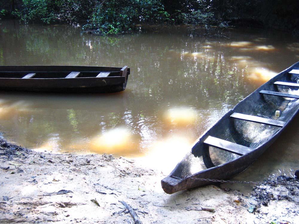 Dugout canoes on the Burro Burro River near Surama. Photo by Nicholas Laughlin
