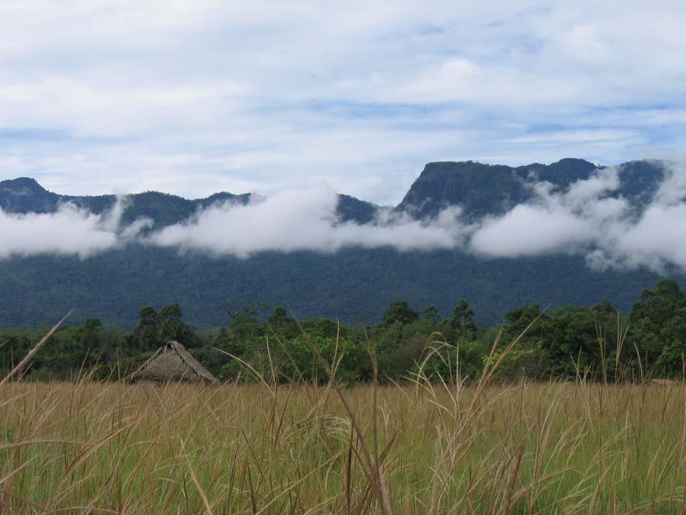 The Kanuku Mountains form a high wall near Moko Moko. Photo by Leon Wainwright
