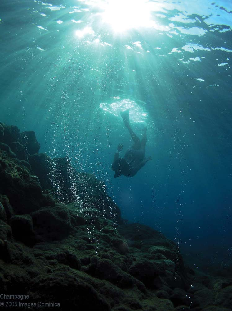 Diving off Champagne Beach in Dominica. Photo courtesy The Dominica Tourism Office