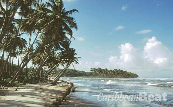 The beach at Mayaro