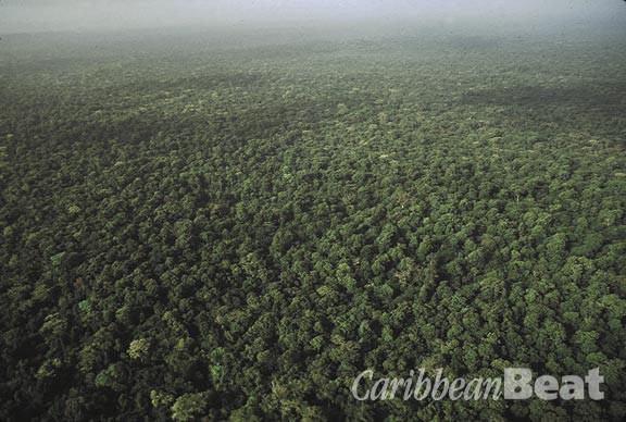 Trinidad's Northern Range