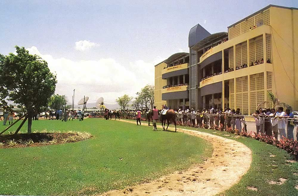 The parade ring, behind the new grandstand. Photograph by Cyan Studios