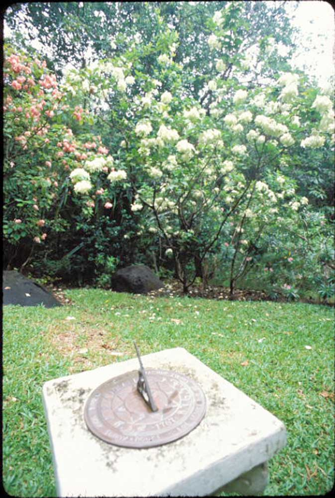 "Sundial in the ""Secret Garden"" at the Mamiku estate. Photograph by Mark Lyndersay"