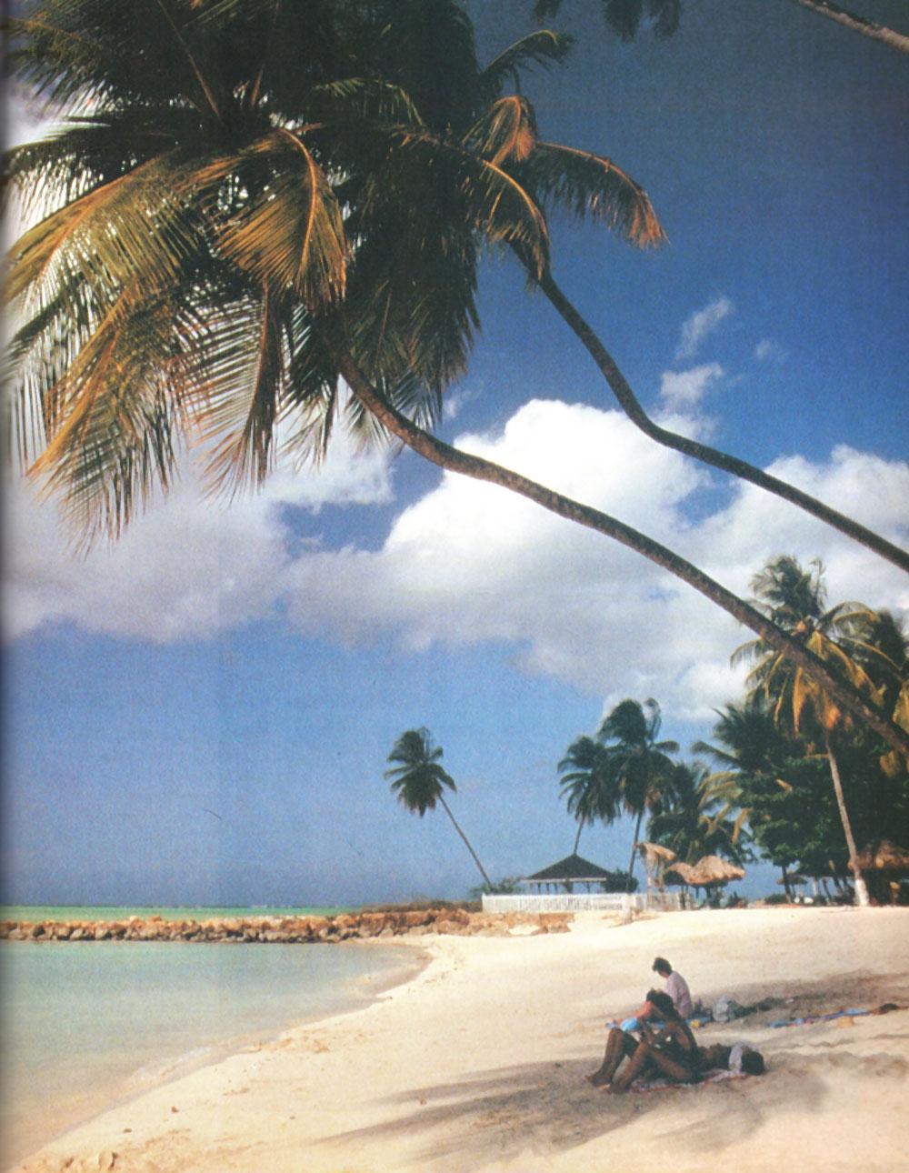 Tranquil Tobago. Photograph by Allan Weisbecker