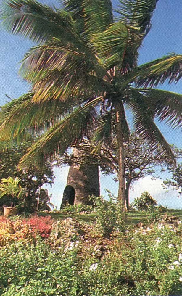 Barbados's gentle open countryside: St George Valley. Photograph by Eleanor Chandler