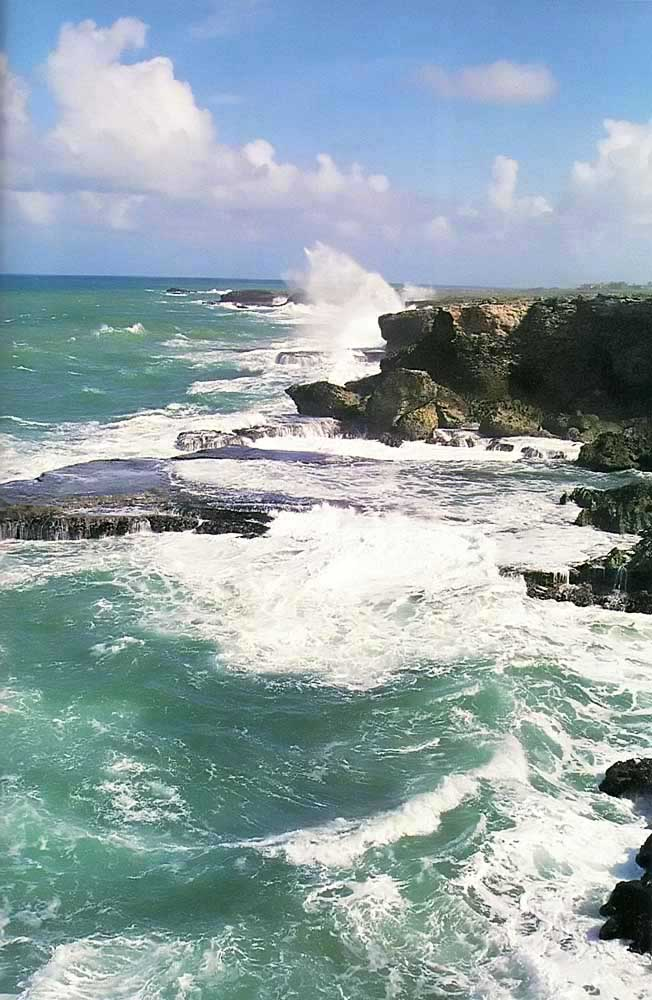 St Lucy: Atlantic rollers sweep against Barbados's northern tip. Photograph by Eleanor Chandler