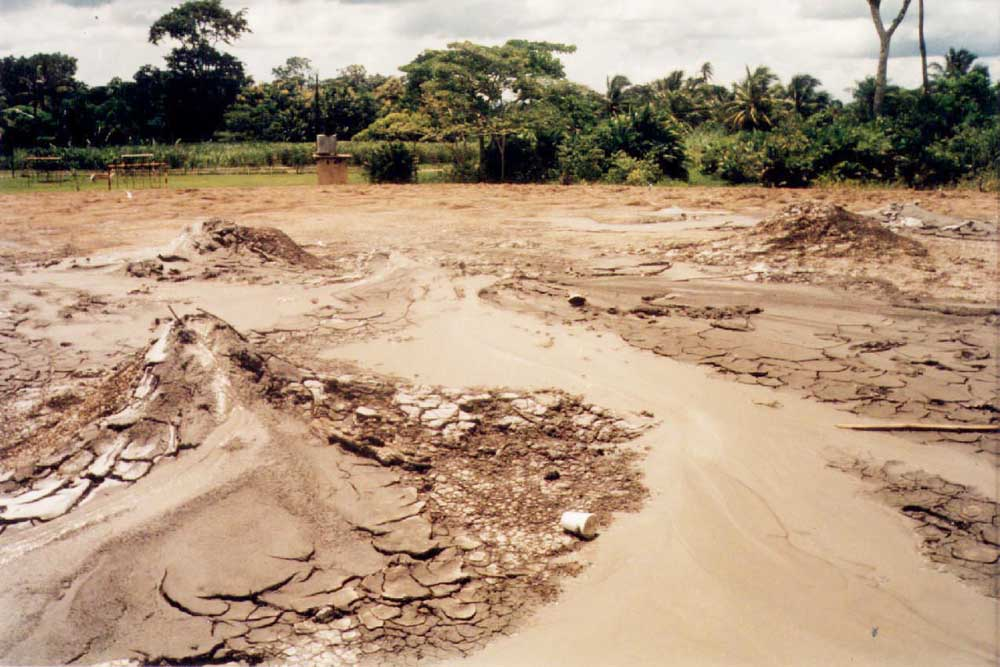 The mud volcano landscape of Piparo, south Trinidad. Photograph by Maura Imbert