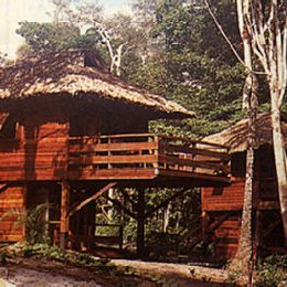 Forest living: Emerald Tower Resort at Madewini. Photograph by James Henderson