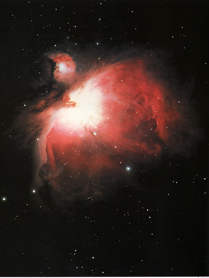 Stars in the making: the Orion Nebula, 1,600 light years away, a brilliant cloud of gas and dust where new stars are being formed. Photograph by Noao/ Science Library