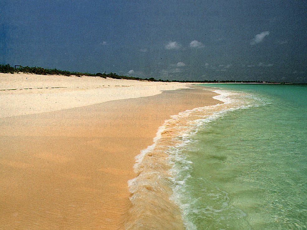 Golden beaches: major Caribbean assets would be at risk from climate change, forest loss or pollution. Photograph taken by Chris Huxley