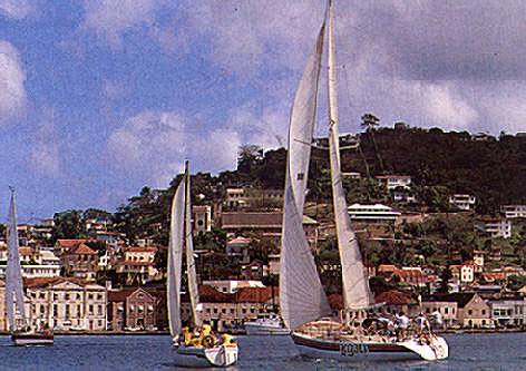Yachts in the Carenage. Photograph by Jenny Bailey