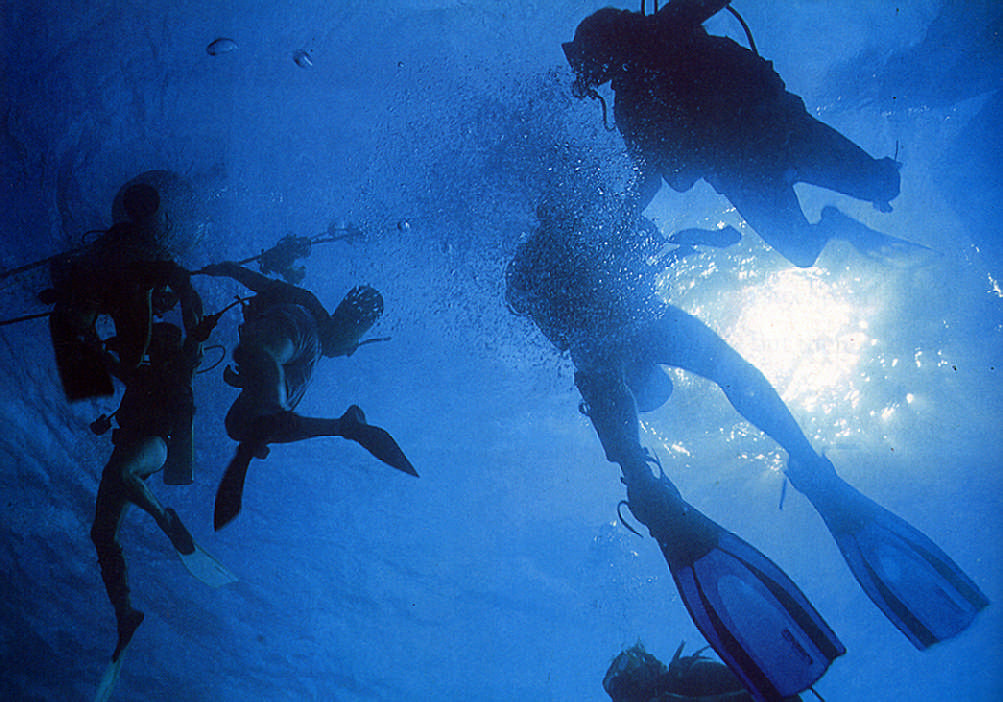 Divers surface after exploring a west coast wreck. Photograph by Mike Toy