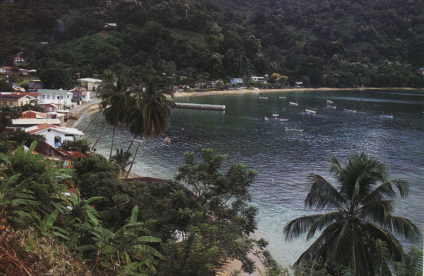 Charlotteville, the fishing village on Tobago's northern tip. Photograph by Allan Weisbecker