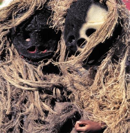 Gorilla mas. Photograph by Seandrakes.com