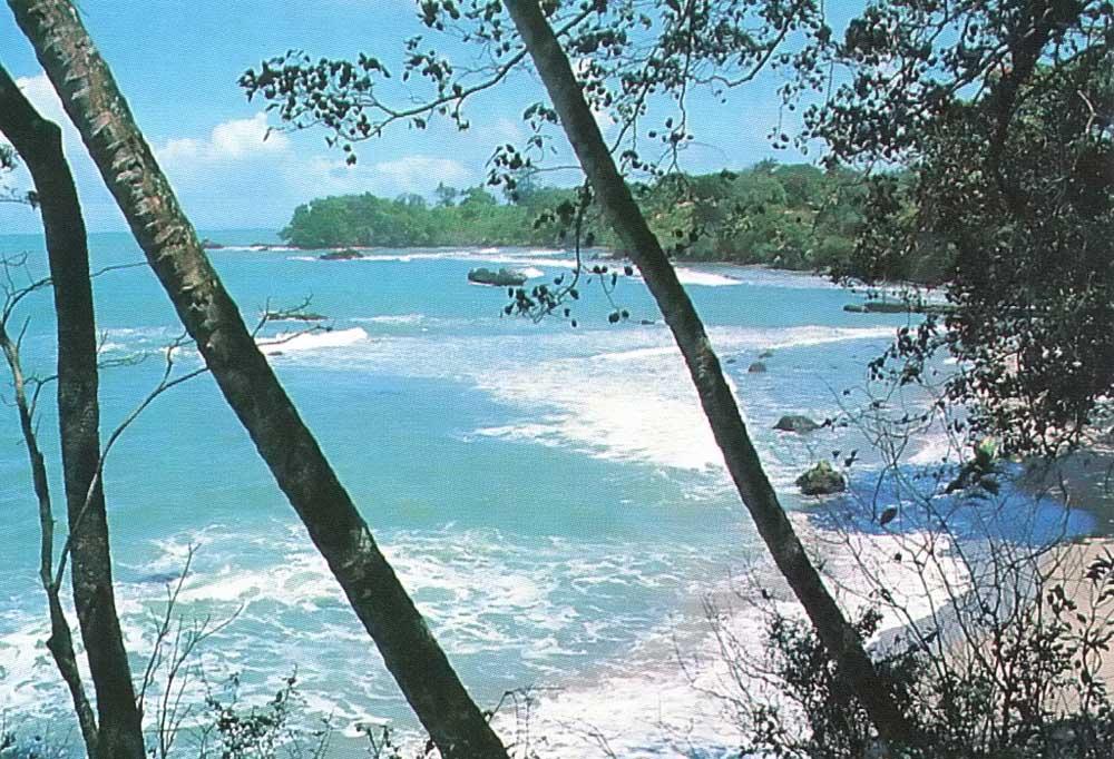 The windswept beauty of Trinidad's north coast. Photograph by Farouk Khan