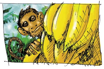 Illustration by James Hackett and Warren LePlatte