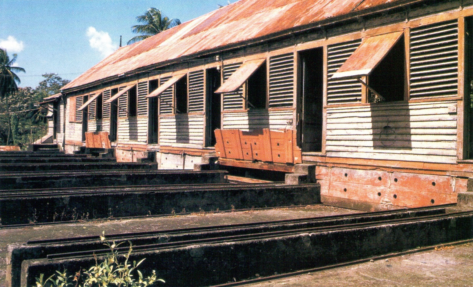 At the Dougaldston processing house, rails are used to roll out the nutmeg drying rocks. Photograph by Edward Barrow.