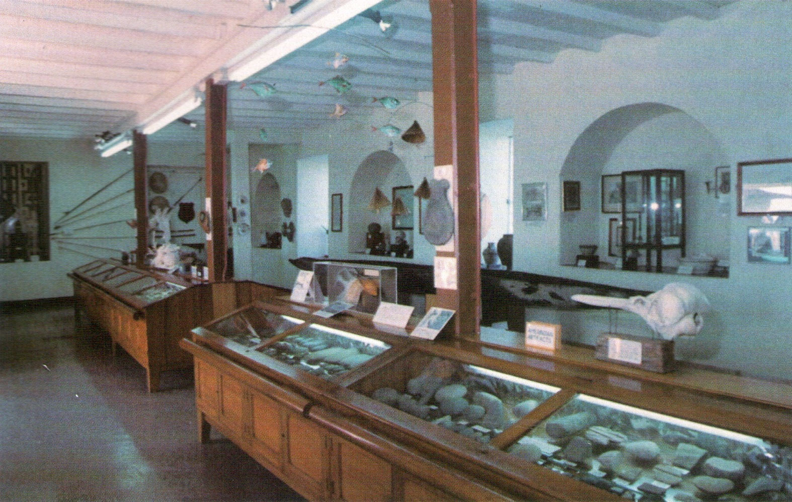 Amerindian artefacts, some more than 4,000 years old, on display at the Tobago Museum. Photograph by Kenneth Lee