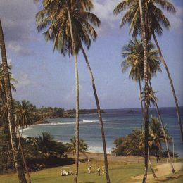 The championship course at Mount Irvine Bay Hotel and Golf Club in Tobago. Photograph by Kenny Lee