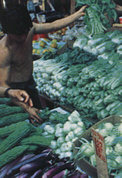 Produce from Chinatown. Photograph by NYS Commerce Department
