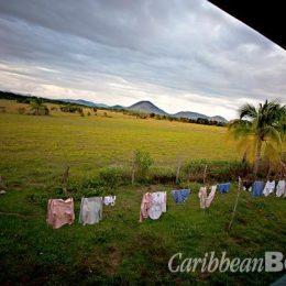 View from the verandah at Dadanawa. Photograph by Abigail Hadeed
