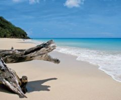 Fryes Beach on the west coast. Photograph courtesy Antigua and Barbuda Tourism Authority