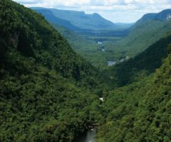 The gorge of the Potaro River in Guyana's interior. Photograph by Nicholas Laughlin