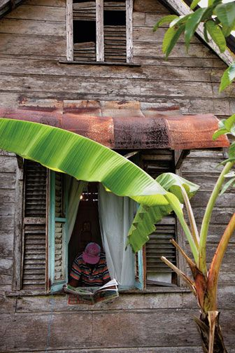 Moruga, south Trinidad. Photograph by Chris Anderson