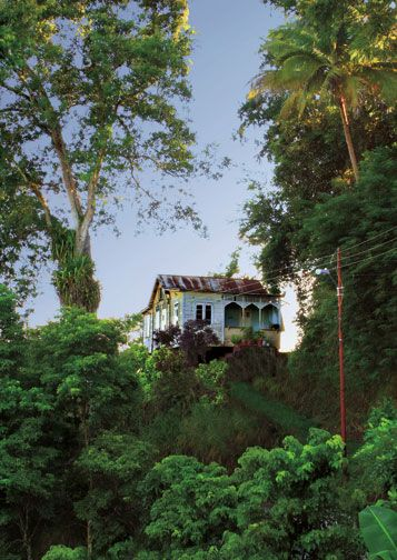 Near Moriah, Tobago. Photograph by Chris Anderson