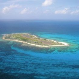 Southwest Cay, Pedro Bank. Photograph courtesy the Nature Conservancy